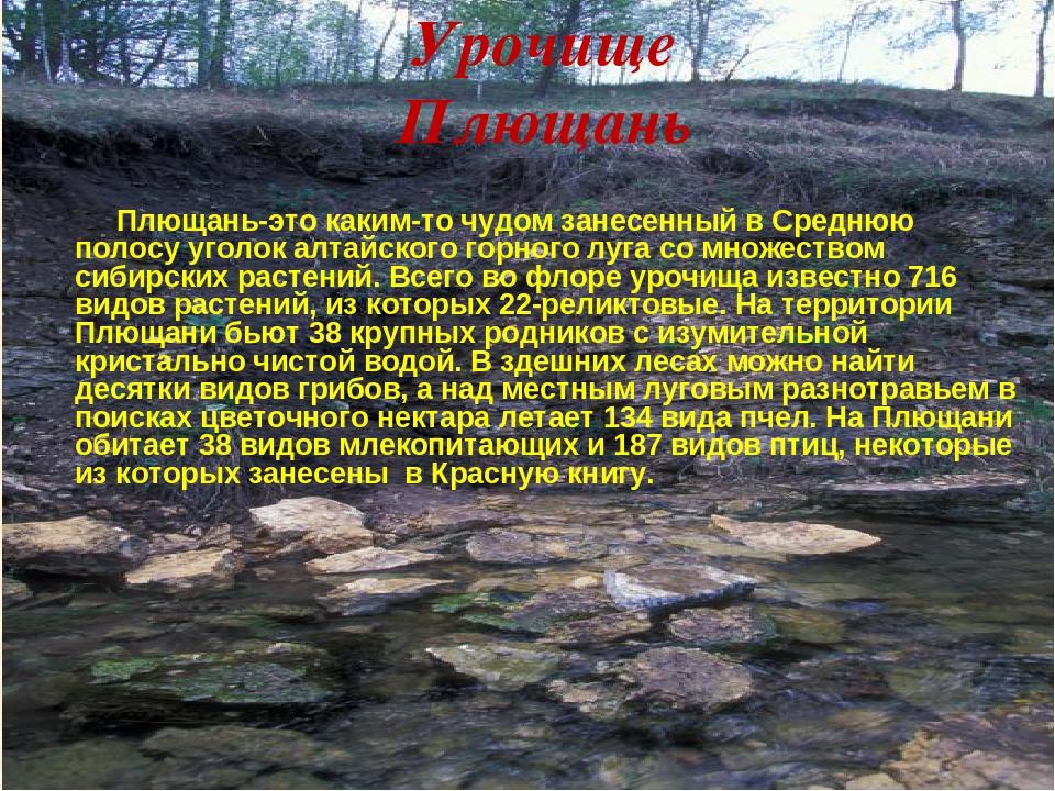 природа липецкой области фото и описание