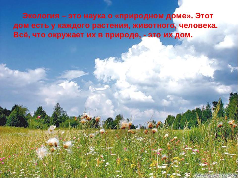 Экология – это наука о «природном доме». Этот дом есть у каждого растения, ж...