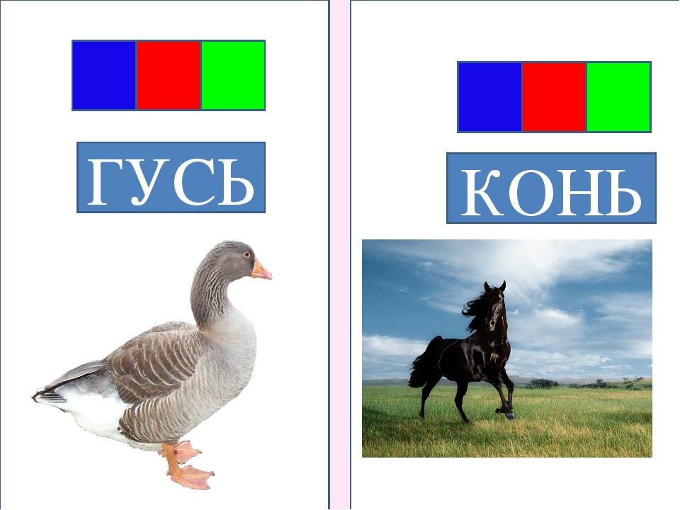 ГУСЬ КОНЬ