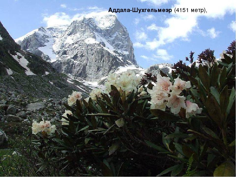 Аддала-Шухгельмеэр (4151 метр),
