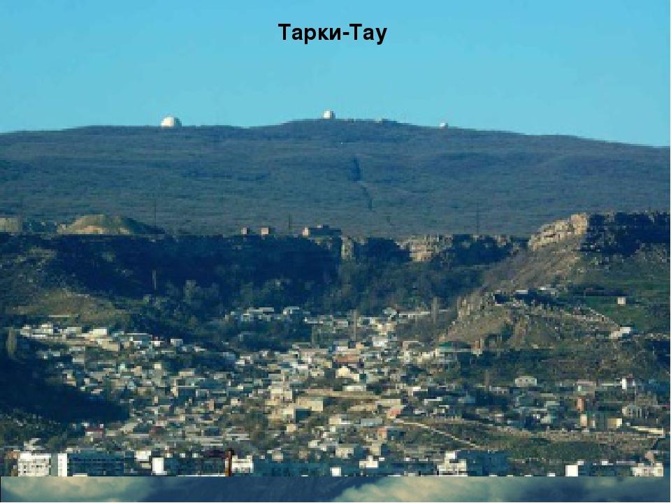 Тарки-Тау