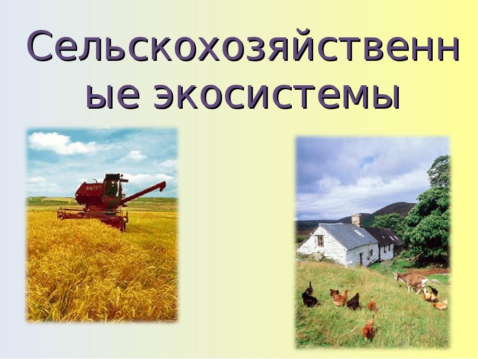 Сельскохозяйственные экосистемы