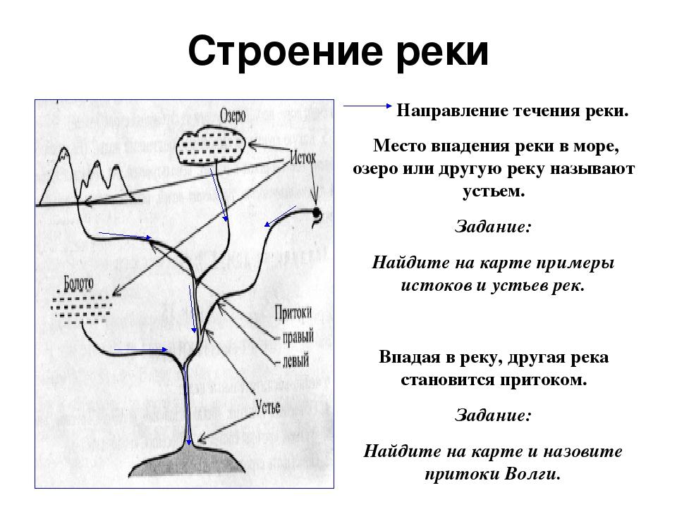 Строение реки Направление течения реки. Место впадения реки в море, озеро или...