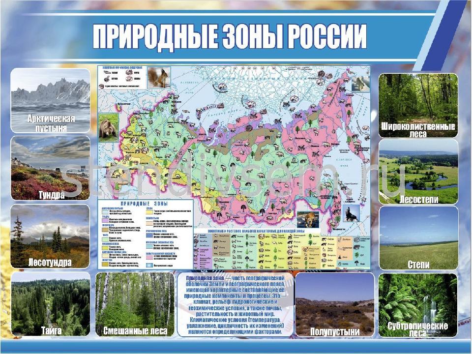 Природная карта россии животные