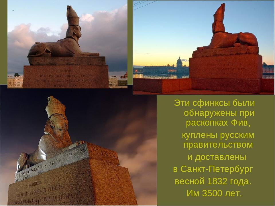 Эти сфинксы были обнаружены при раскопках Фив, куплены русским правительством...