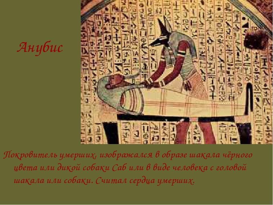 Анубис Покровитель умерших, изображался в образе шакала чёрного цвета или дик...