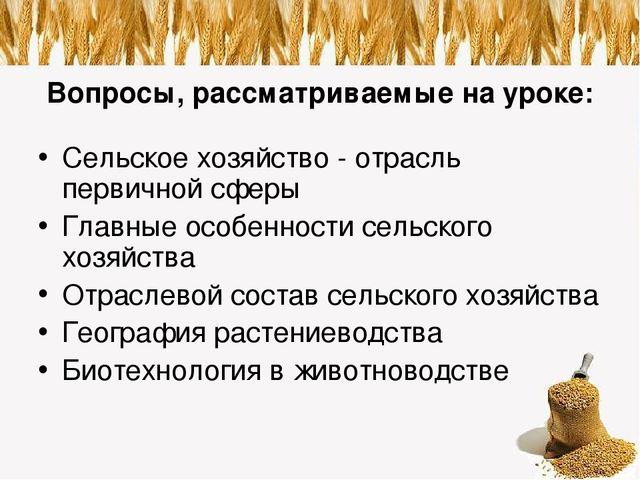 Презентация на тему Сельское хозяйство растениеводство и  Вопросы рассматриваемые на уроке Сельское хозяйство отрасль первичной сфе