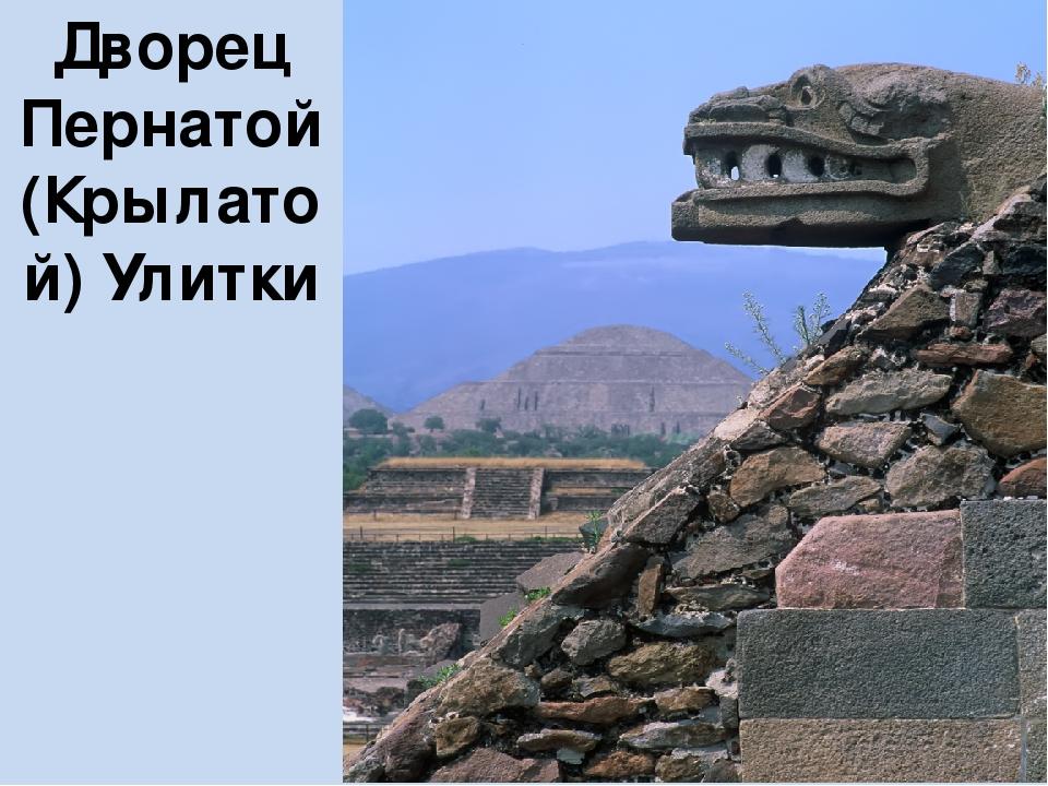 Дворец Пернатой (Крылатой) Улитки