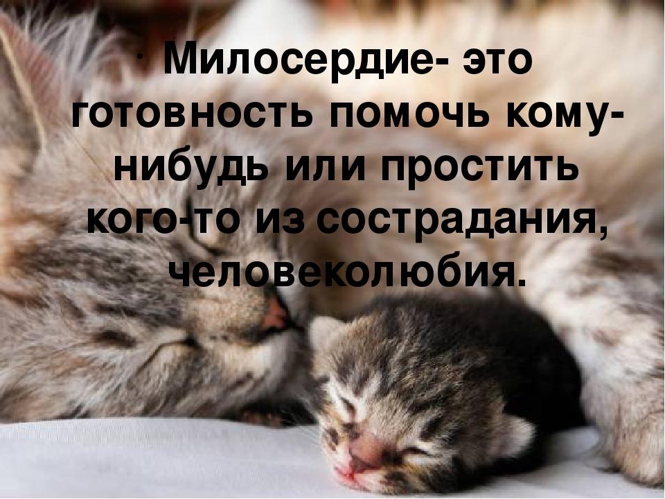 Милосердие- это готовность помочь кому-нибудь или простить кого-то из сострад...