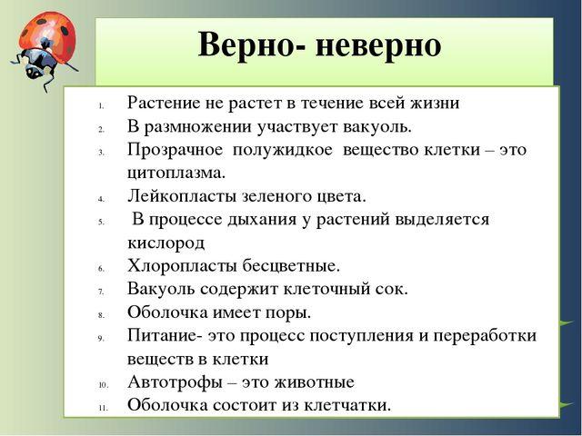 Презентация Папоротники 6 Класс