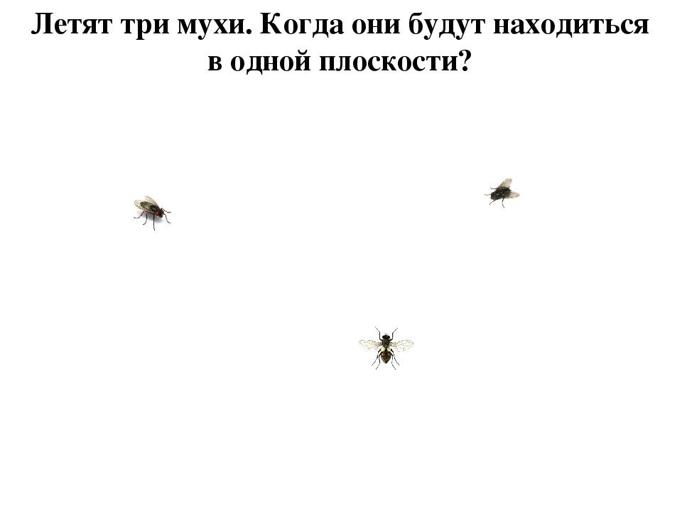 Летят три мухи. Когда они будут находиться в одной плоскости?