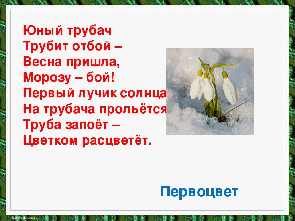 Юный трубач Трубит отбой – Весна пришла, Морозу – бой! Первый лучик солнца На...