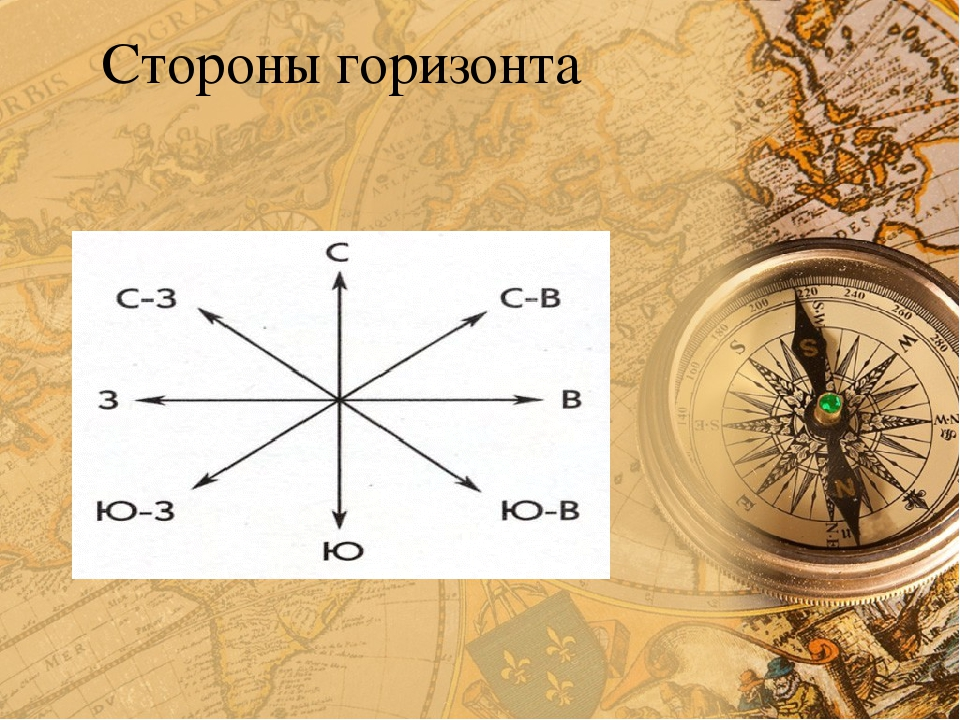 фотография компаса с подписанием сторон света подобного бага