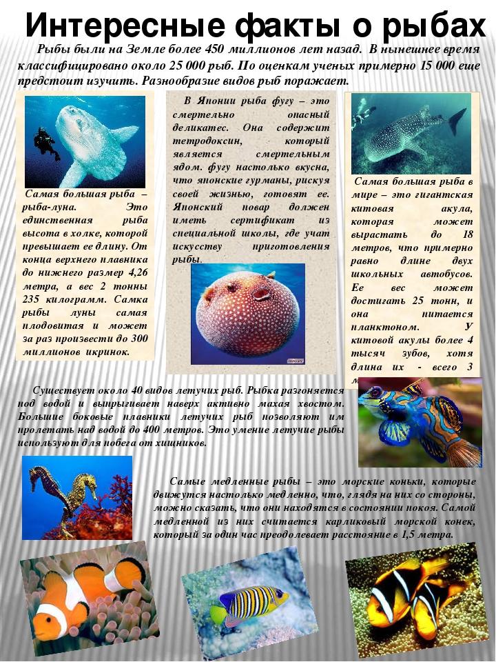 подтверждает интересная информация с картинками по биологии том, что