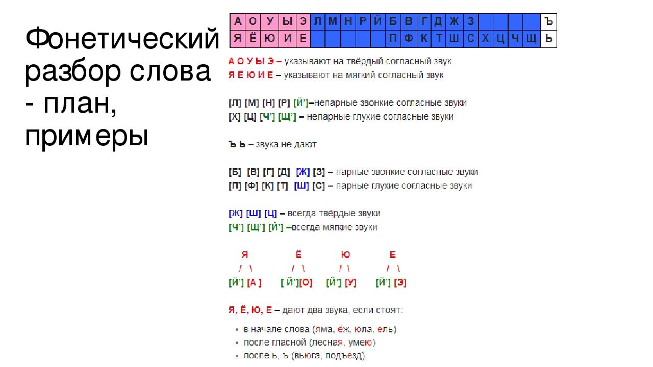 живая фонетический разбор отличается сероватым цветом