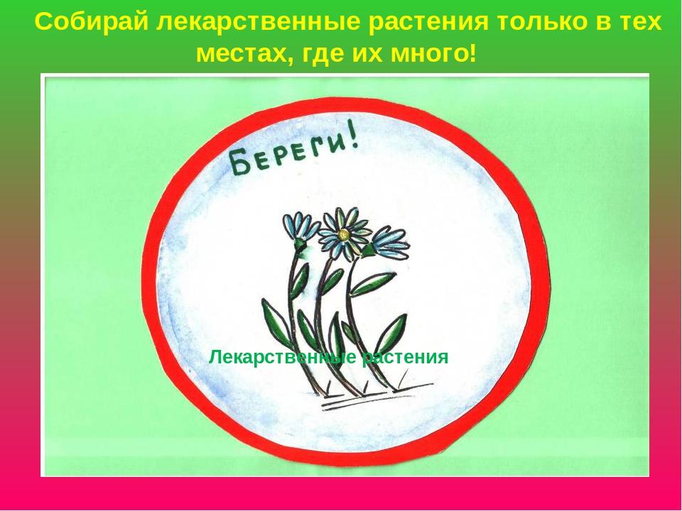 картинки для охраны растений может быть кусок