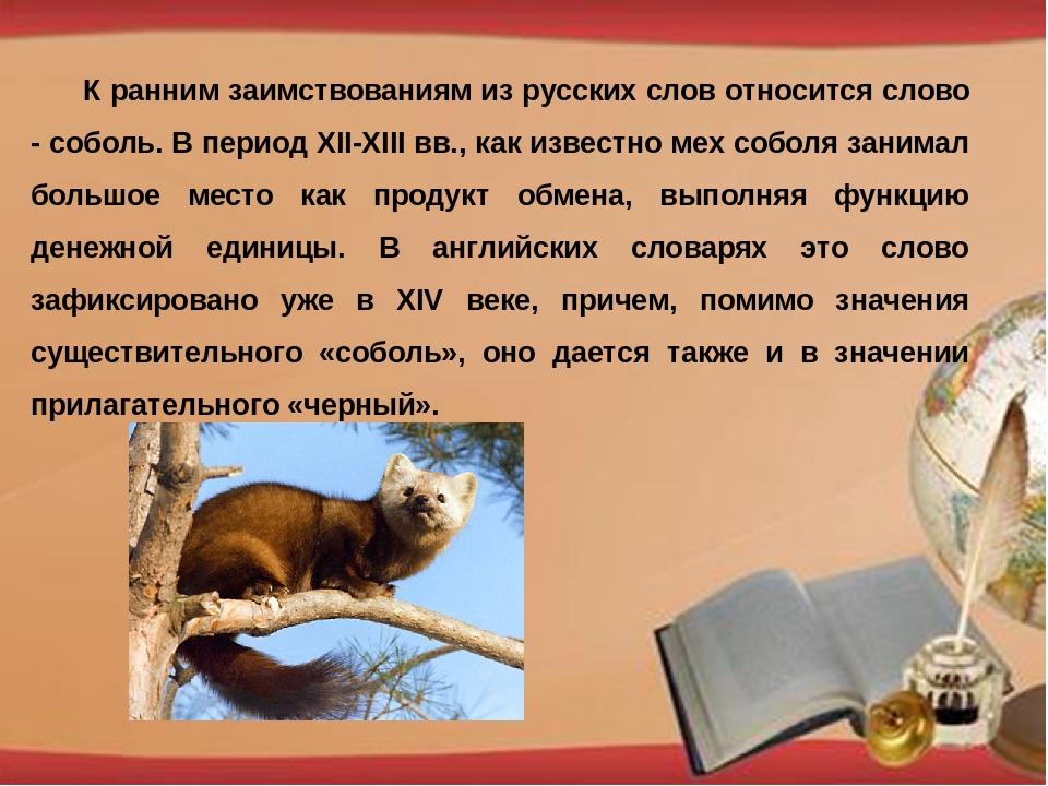 К ранним заимствованиям из русских слов относится слово - соболь. В период X...