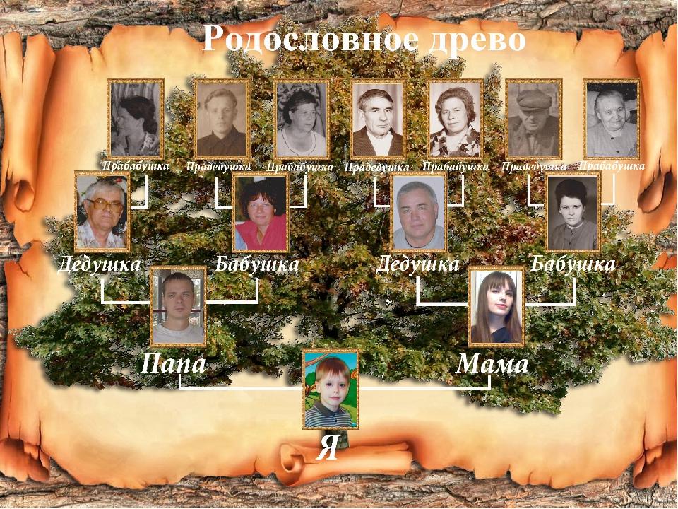 обновление Декабрь образец заполнения генеалогического дерева оформить ребенку