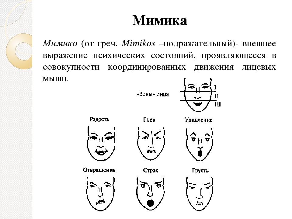 Мимика и жесты человека психология картинки с описанием