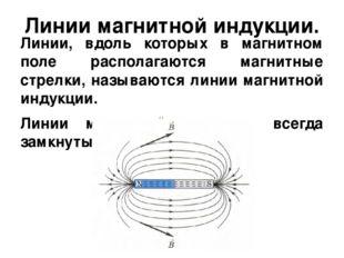 Линии магнитной индукции. Линии, вдоль которых в магнитном поле располагаются