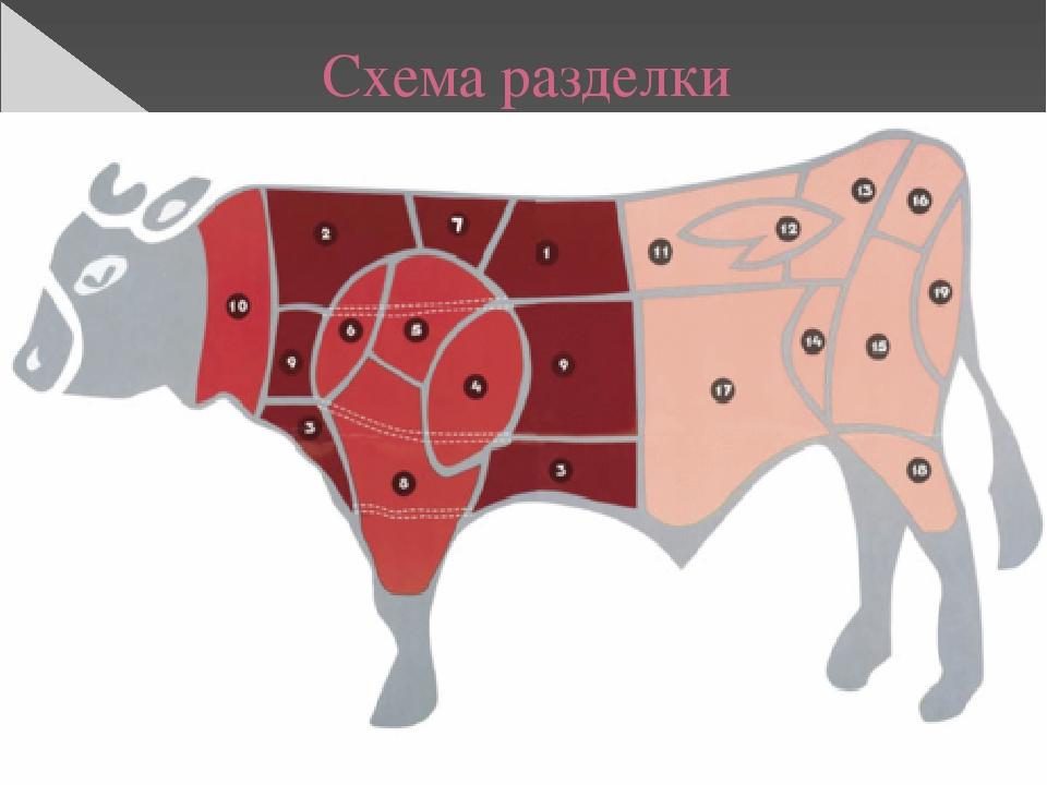 Схема разделки