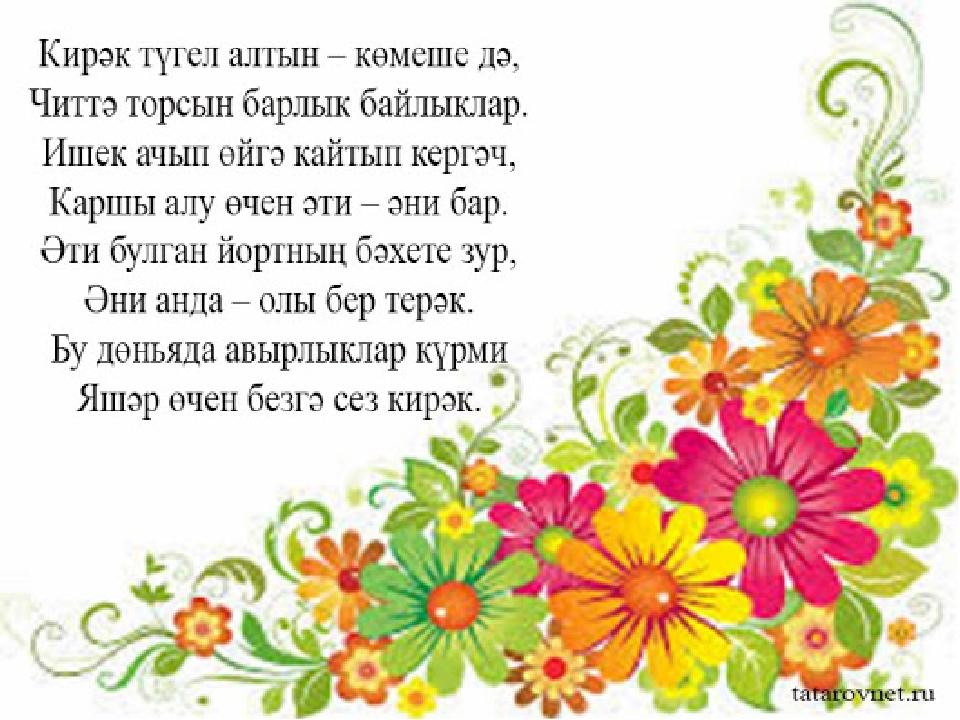 наши петухи бриллиантовый поздравления татарча растение можно