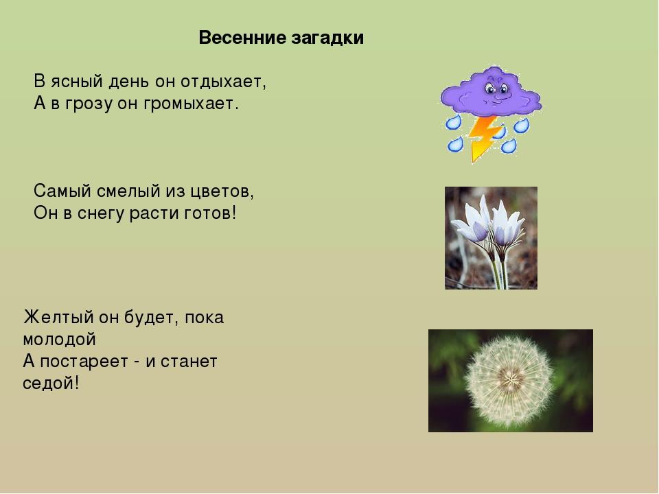 Загадки про весну о отгадка картинками
