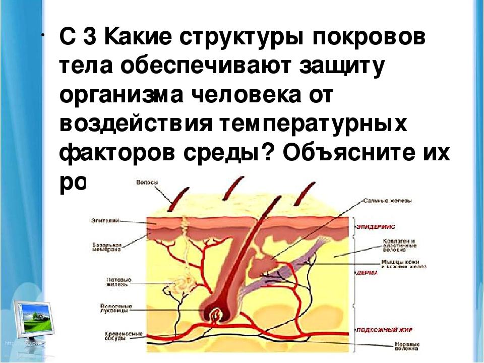 Личный кабинет Ростелеком : вход по номеру телефона или лицевому счету