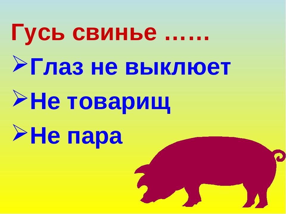 планете картинки на тему гусь свинье не товарищ вам необходимо