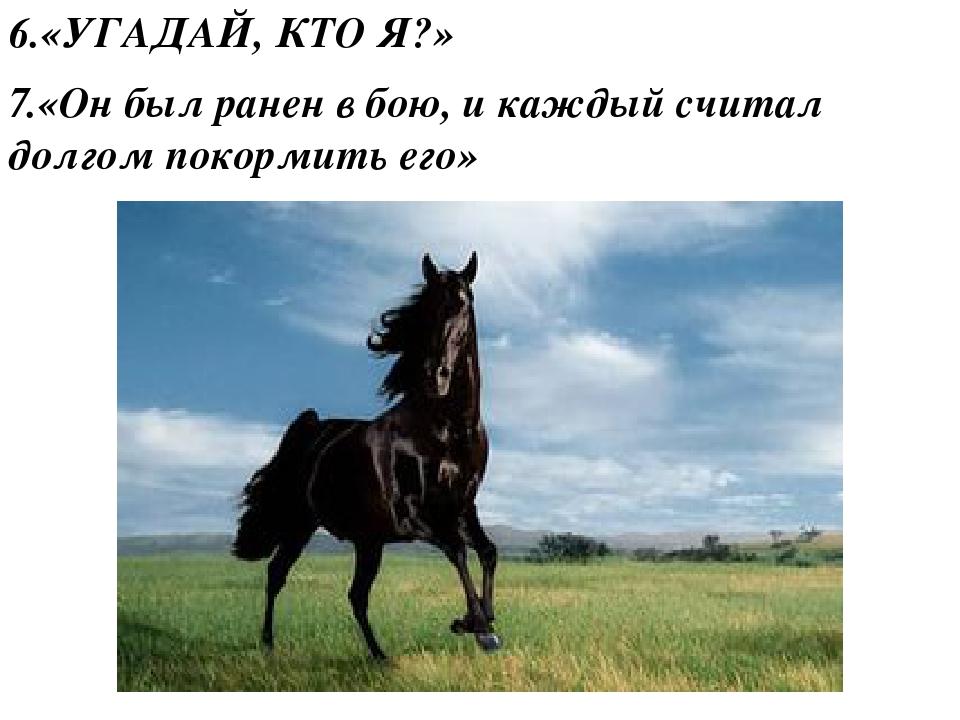 6.«УГАДАЙ, КТО Я?» 7.«Он был ранен в бою, и каждый считал долгом покормить его»