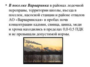 В поселке Варваринкав районах лодочной переправы, территории школы, въезда в
