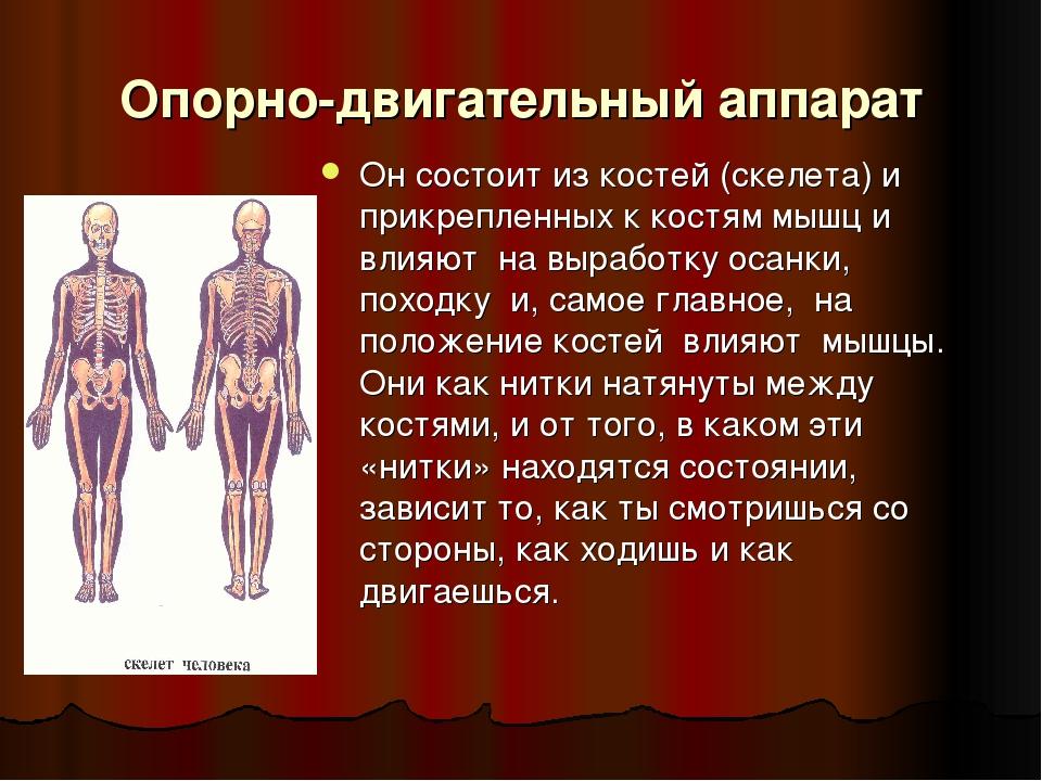что надо делать при заболевание опорнодвиготельного апарата нога плохо ходит