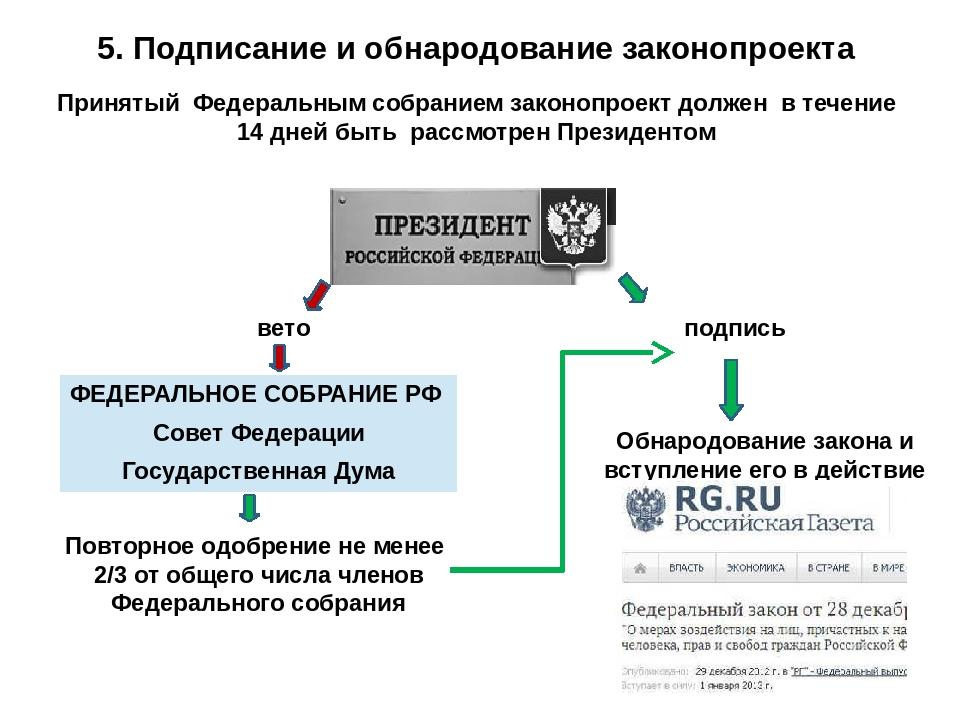Законы в российской федерации обнародует