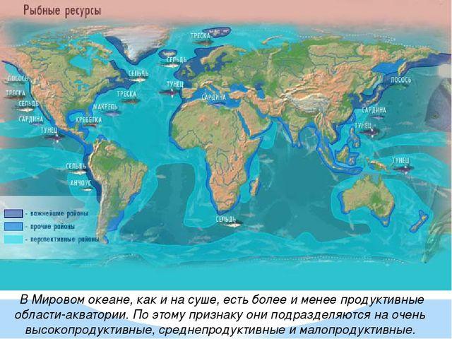 реферат на тему ресурсы мирового океана