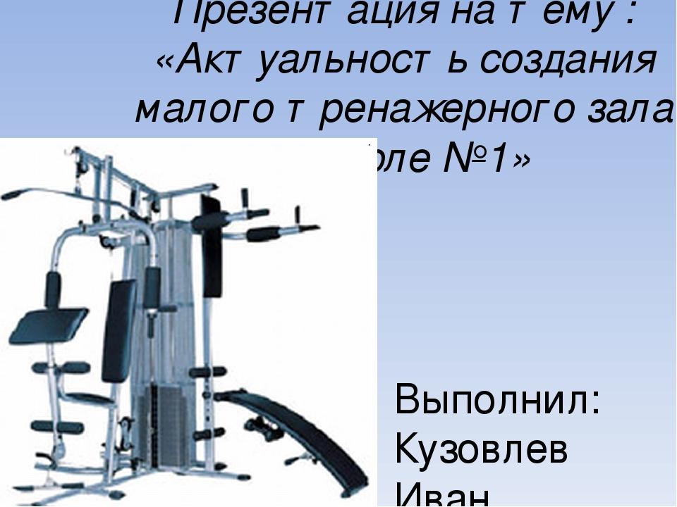 Презентация на тему : «Актуальность создания малого тренажерного зала в школе...