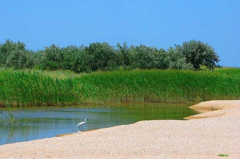 Соленое озеро в ростове на дону фото центр