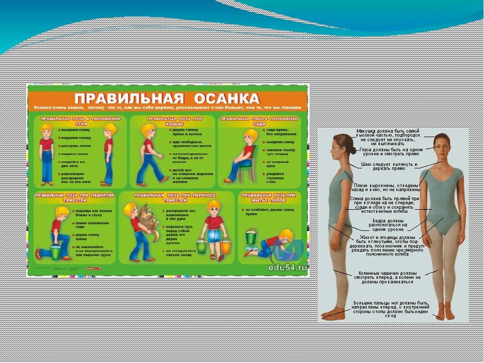 Осанка школьника упражнения картинки
