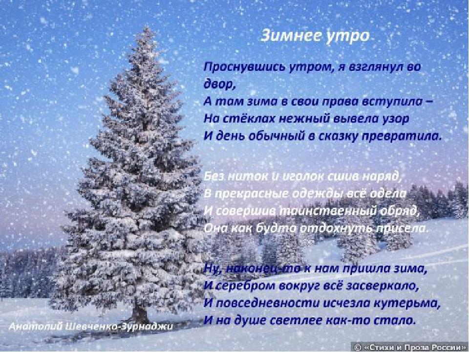 прошел фото о зиме природа со стихами любите необычные украшения
