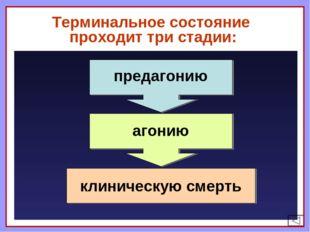Терминальное состояние проходит три стадии: предагонию агонию клиническую см