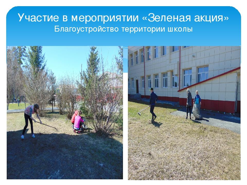 Участие в мероприятии «Зеленая акция» Благоустройство территории школы