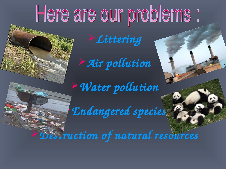 dialogue about air pollution Please initiate conversation as part of the herald journal newspaper plan to discuss a way to improve the dirty air i've always known it to be a problem and figured, oh, those smart people — scientists/automobile inventor people — will do something and we will all jump on board this has not.