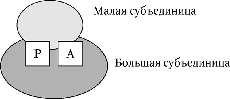 hello_html_16d2f4bc.jpg