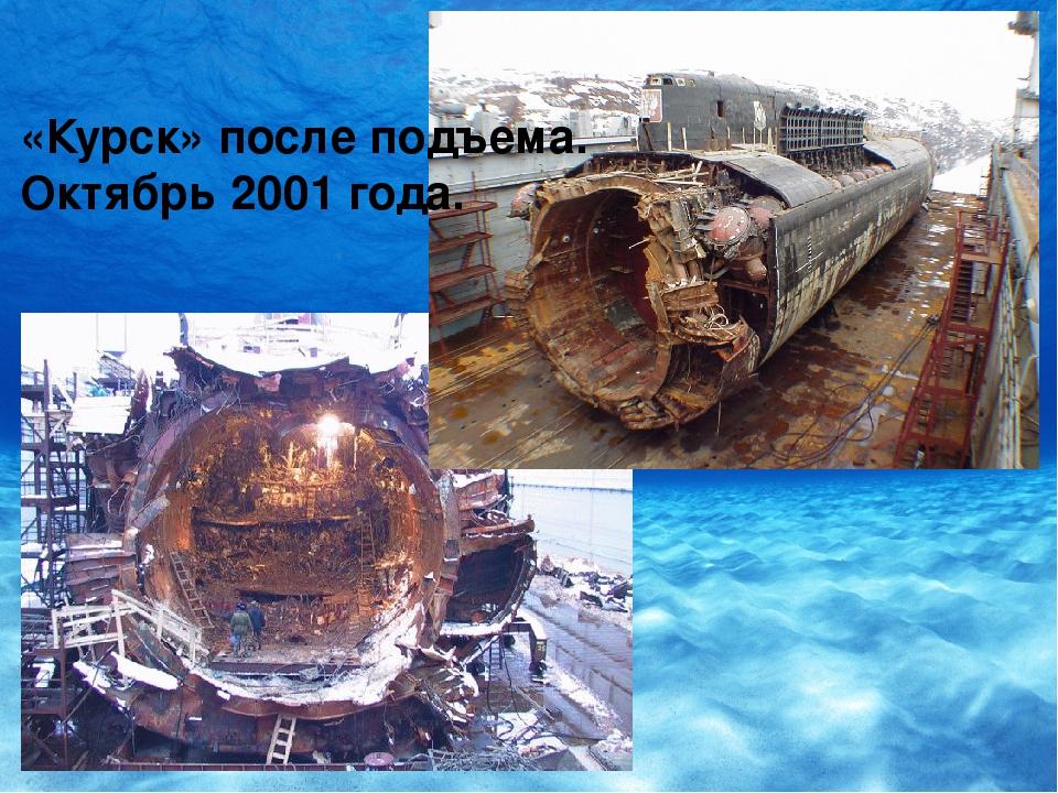 подводная лодка курск фото после поднятия который родом