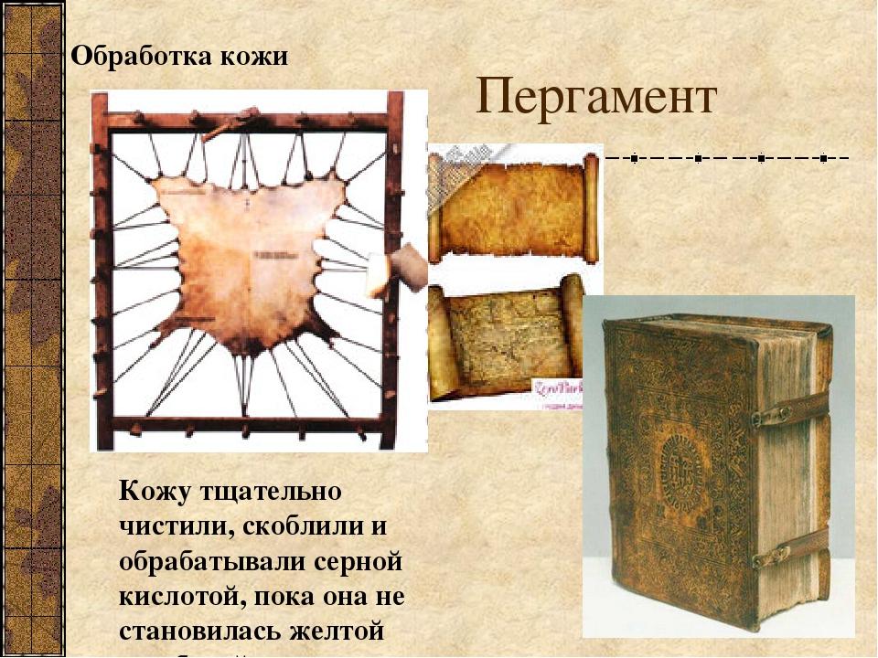 Картинки пергамента для детей, открытка