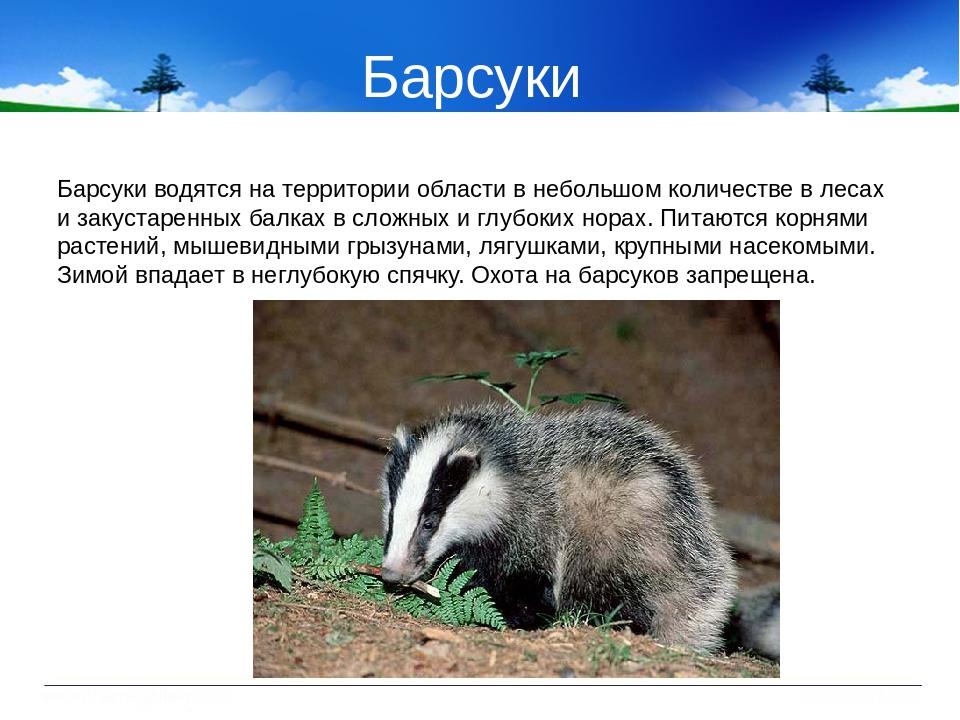 тому животные курской области фото и описание ограниченной