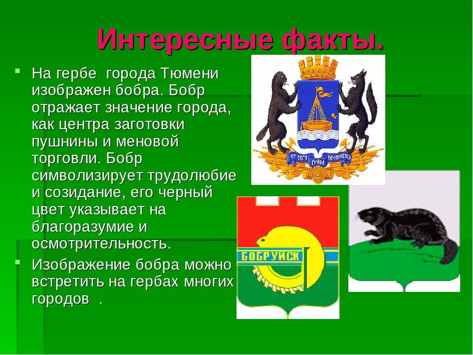 Интересные факты о гербе иркутска