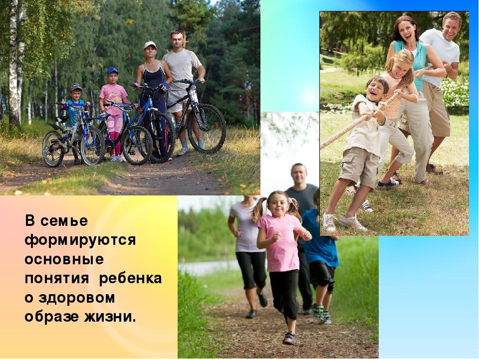 Здоровый образ жизни семьи картинки с информациями