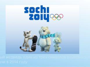 Белый медведь один из трех символов олимпийских игр в Сочи в 2014 году