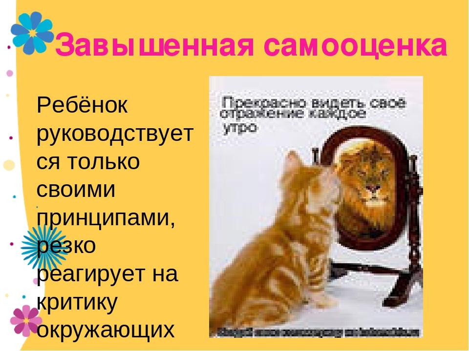Завышенная самооценка смешные картинки, открытка поздравление