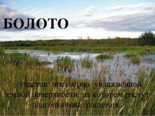БОЛОТО - участок чрезмерно увлажненной земной поверхности, на котором растут